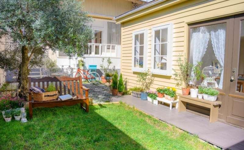 オリーヴの樹と自然光に包まれた天然の芝生とお庭つき一軒家 300㎡!ハウススタジオ オールドオリ―ヴ