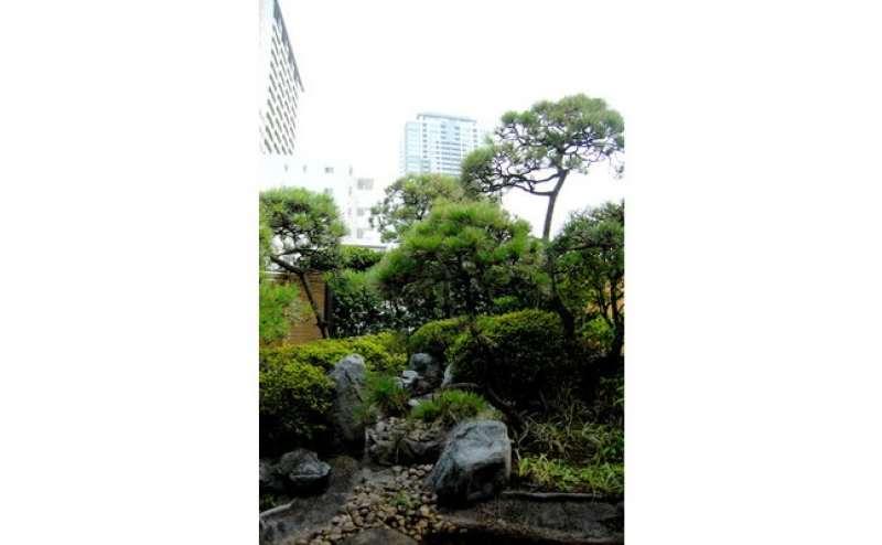 日本庭園では、撮影もOKです。