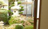 和室の外は庭園風の庭があります